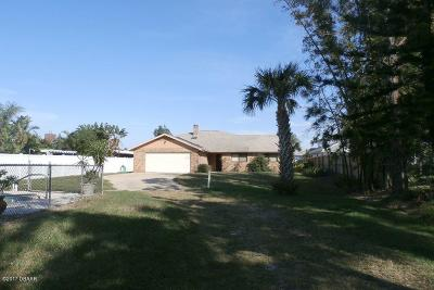 New Smyrna Beach Single Family Home For Sale: 1703 S Riverside Drive