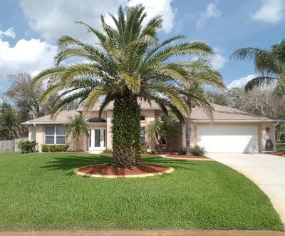 Ponce Inlet Single Family Home For Sale: 76 Buschman Drive