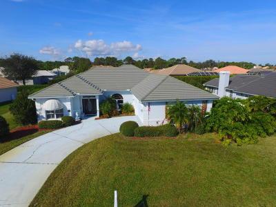 Daytona Beach Single Family Home For Sale: 920 Sea Duck Drive