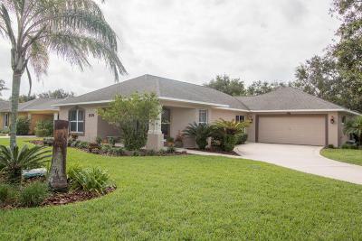 Port Orange Single Family Home For Sale: 1579 Town Park Drive