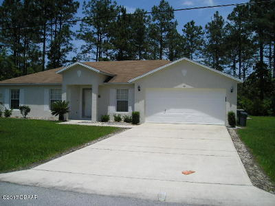 Palm Coast Single Family Home For Sale: 42 Renworth Lane