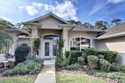 Ormond Beach Single Family Home For Sale: 1216 Hampstead Lane