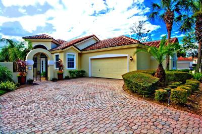 Palm Coast Single Family Home For Sale: 7 Corte Del Mar