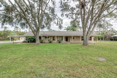 Ormond Beach Single Family Home For Sale: 105 Appaloosa Lane
