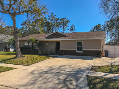 South Daytona Single Family Home For Sale: 589 Clairmont Lane