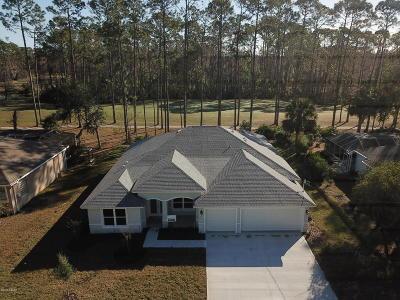 Palm Coast Single Family Home For Sale: 31 Egan Drive