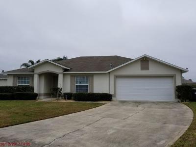 Daytona Beach Single Family Home For Sale: 132 Heathrow Drive