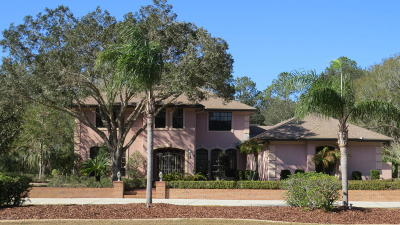 Port Orange Single Family Home For Sale: 2061 Red Robin Drive