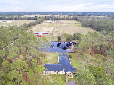 New Smyrna Beach Single Family Home For Sale: 495 County Road 415