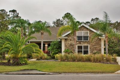 Ormond Beach Single Family Home For Sale: 94 Tomoka Ridge Way
