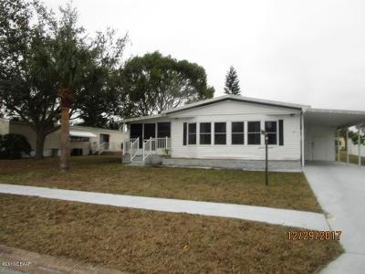 Port Orange Single Family Home For Sale: 710 Larado Drive