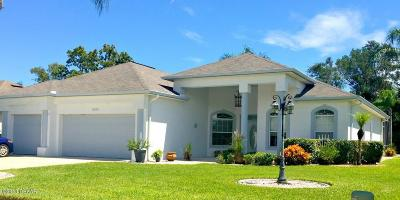 Port Orange Single Family Home For Sale: 5955 Shady Creek Lane
