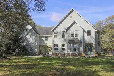 Deland Single Family Home For Sale: 1710 Bear Paw Lane
