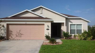 Daytona Beach Single Family Home For Sale: 252 Thornberry Branch Lane