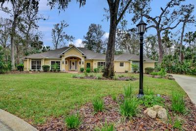 Ormond Beach Single Family Home For Sale: 4194 Sanora Lane