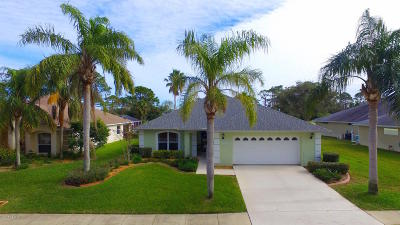 New Smyrna Beach Single Family Home For Sale: 2803 Turnbull Estates Drive