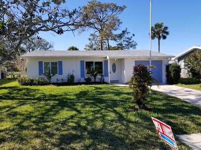 New Smyrna Beach Single Family Home For Sale: 632 Goodwin Avenue