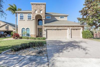 Port Orange Single Family Home For Sale: 6040 Rio Verde Drive