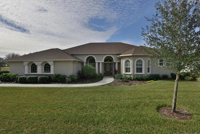 Ormond Beach Single Family Home For Sale: 3100 Acoma Drive