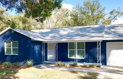 Deland Single Family Home For Sale: 109 N Fairfax Avenue