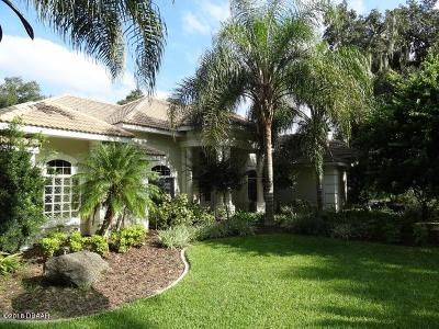 Ormond Beach Single Family Home For Sale: 1225 Killarney Drive
