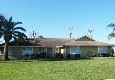 Daytona Beach Single Family Home For Sale: 949 Pelican Bay Drive