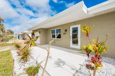 Daytona Beach Shores Single Family Home For Sale: 3257 Esperanza Avenue