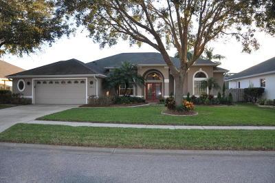 Port Orange Single Family Home For Sale: 1340 Osprey Nest Lane