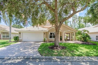 Ormond Beach Single Family Home For Sale: 409 Seabrook Road