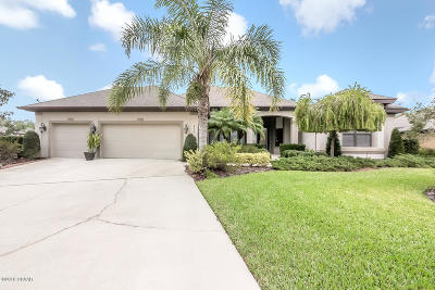 Ormond Beach Single Family Home For Sale: 1016 Lake Bridge Drive