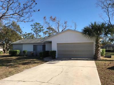 Port Orange Single Family Home For Sale: 1104 Kane Drive