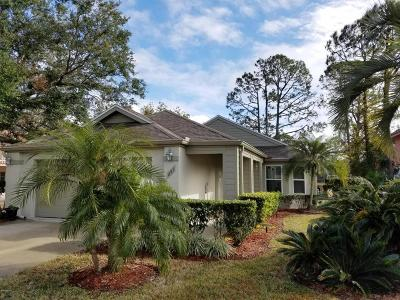 Daytona Beach Single Family Home For Sale: 251 Braeburn Circle