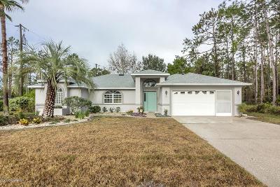 Palm Coast Single Family Home For Sale: 30 Elder Drive