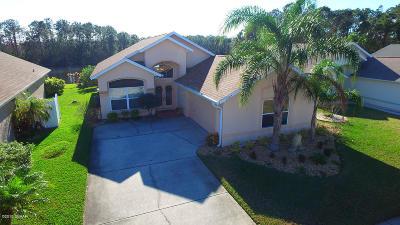Port Orange Single Family Home For Sale: 6284 Palm Vista Street