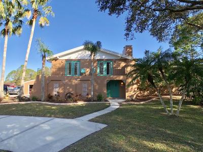 New Smyrna Beach Single Family Home For Sale: 4319 Clovercrest Drive