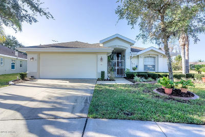 Port Orange Single Family Home For Sale: 1385 Coconut Palm Circle
