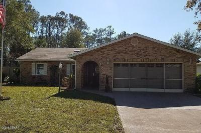 Palm Coast Single Family Home For Sale: 12 Point Pleasant Drive