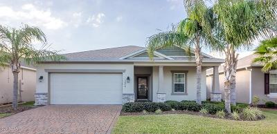 Port Orange Single Family Home For Sale: 3848 Bourbon Street