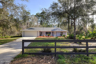 Ormond Beach Single Family Home For Sale: 265 Bridle Path Lane