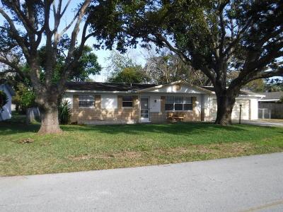 South Daytona Single Family Home For Sale: 2417 Kenilworth Avenue