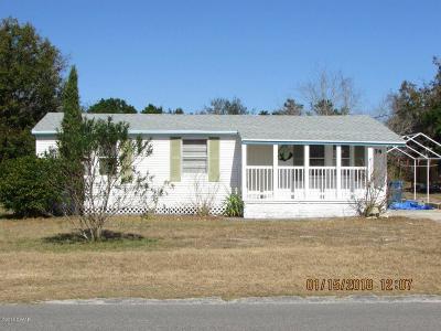 Daytona Beach Single Family Home For Sale: 1174 Pine Street