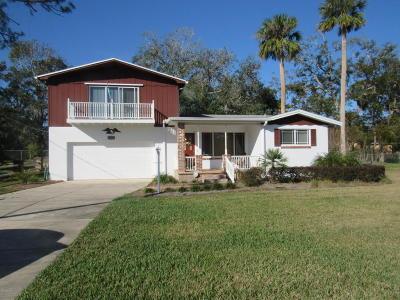Port Orange Single Family Home For Sale: 5272 Barhydt Avenue