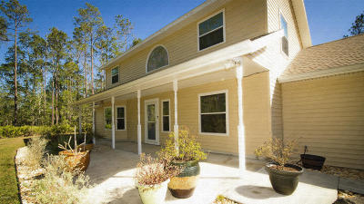 Ormond Beach Single Family Home For Sale: 244 Conifer Lane