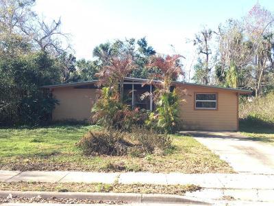 Daytona Beach Single Family Home For Sale: 732 Terrace Avenue