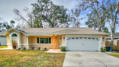 Ormond Beach Single Family Home For Sale: 35 Oak Brook Drive