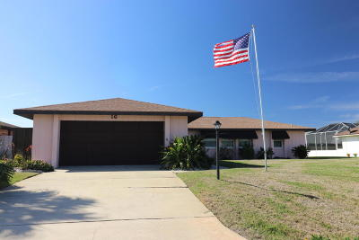 Ormond Beach Single Family Home For Sale: 16 Sea Hawk Drive