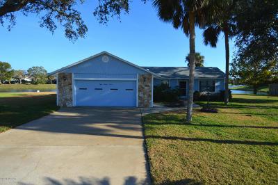 Port Orange Single Family Home For Sale: 827 Pine Tree Court