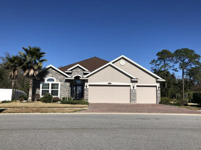 Palm Coast Single Family Home For Sale: 17 Auberry Drive