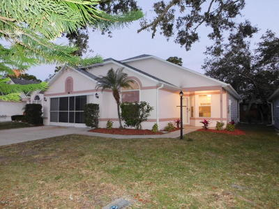 Port Orange Single Family Home For Sale: 123 Crooked Pine Road