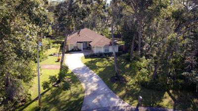 Ormond Beach Single Family Home For Sale: 3993 Dakota Circle